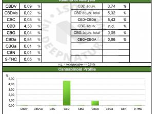 kwaliteisrapport CBDENZo